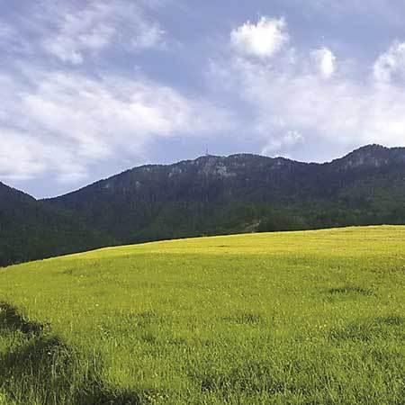 Urslja gora Plesivec